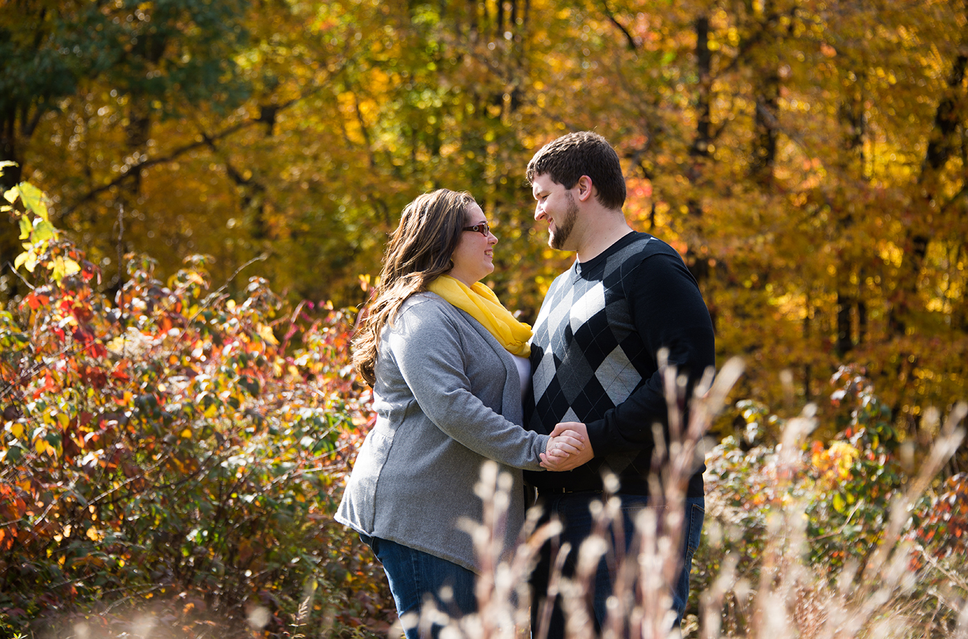 All Occasions Photography Albany NY - Engagement Photography Autumn Wilderness Shot