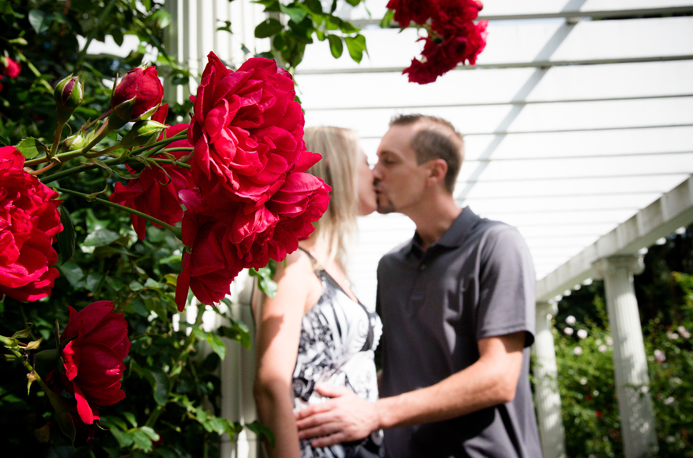 All Occasions Photography Albany NY - Engagement Photography Couple by Roses
