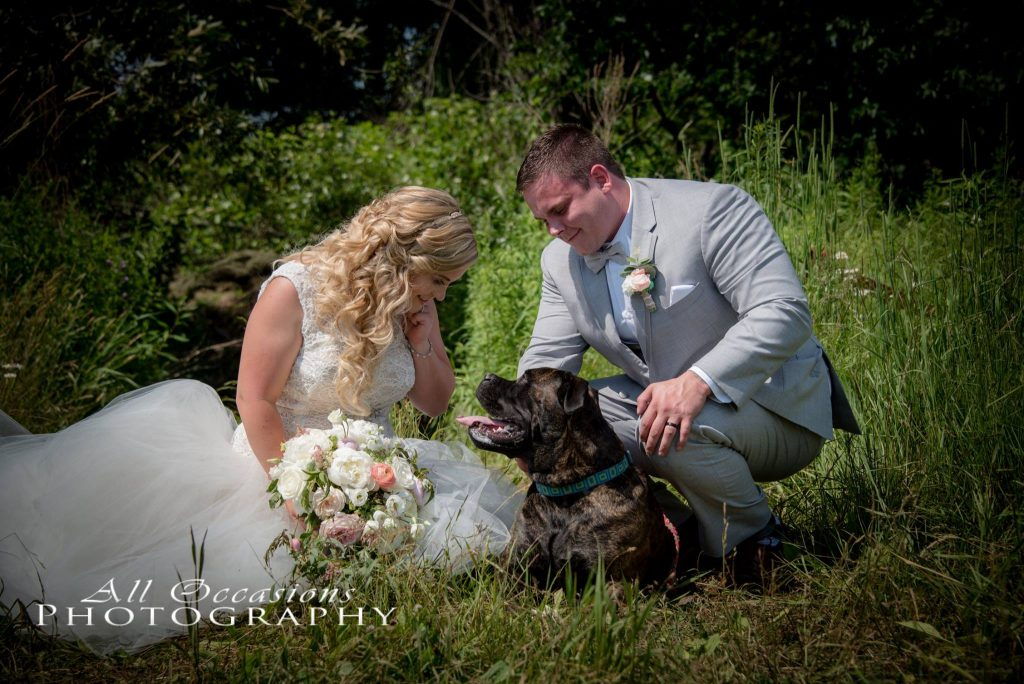 All Occasions Photography Albany NY - Wedding Photography Bride & Groom Sitting in Field With Dog