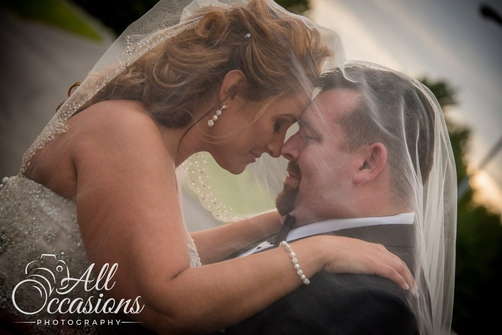 All Occasions Photography Albany NY - Wedding Photography Groom Beneath Brides Veil